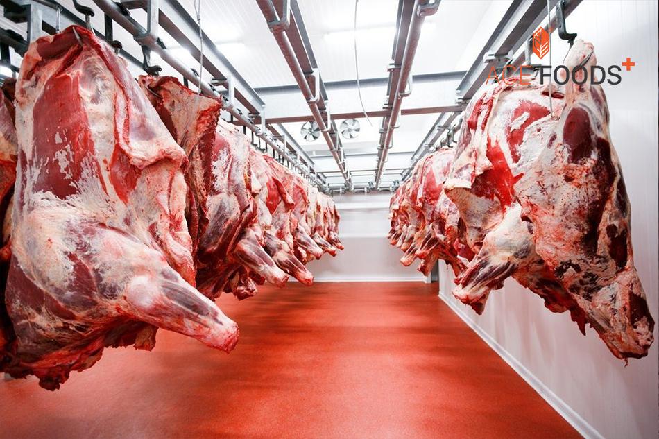 Phòng giết mổ bò Mỹ
