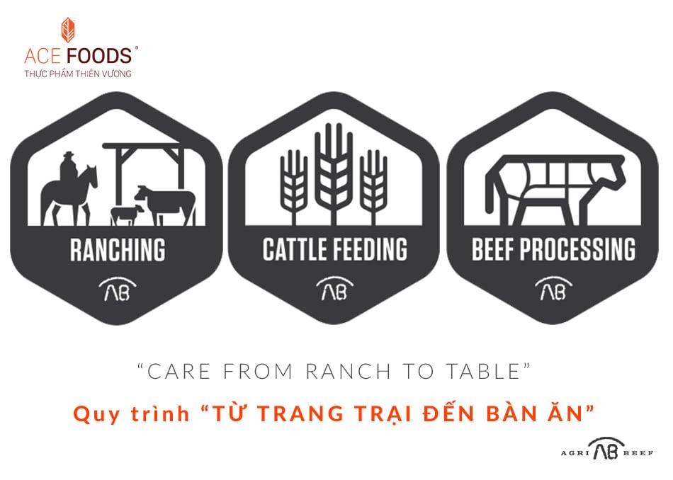 quy trình từ trang trại đến bàn ăn