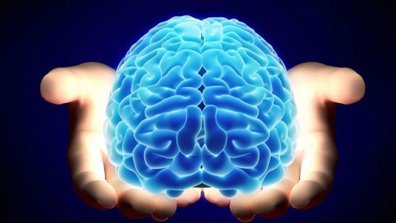 Hãy giải phóng sức mạnh não bộ của bạn ngay bây giờ