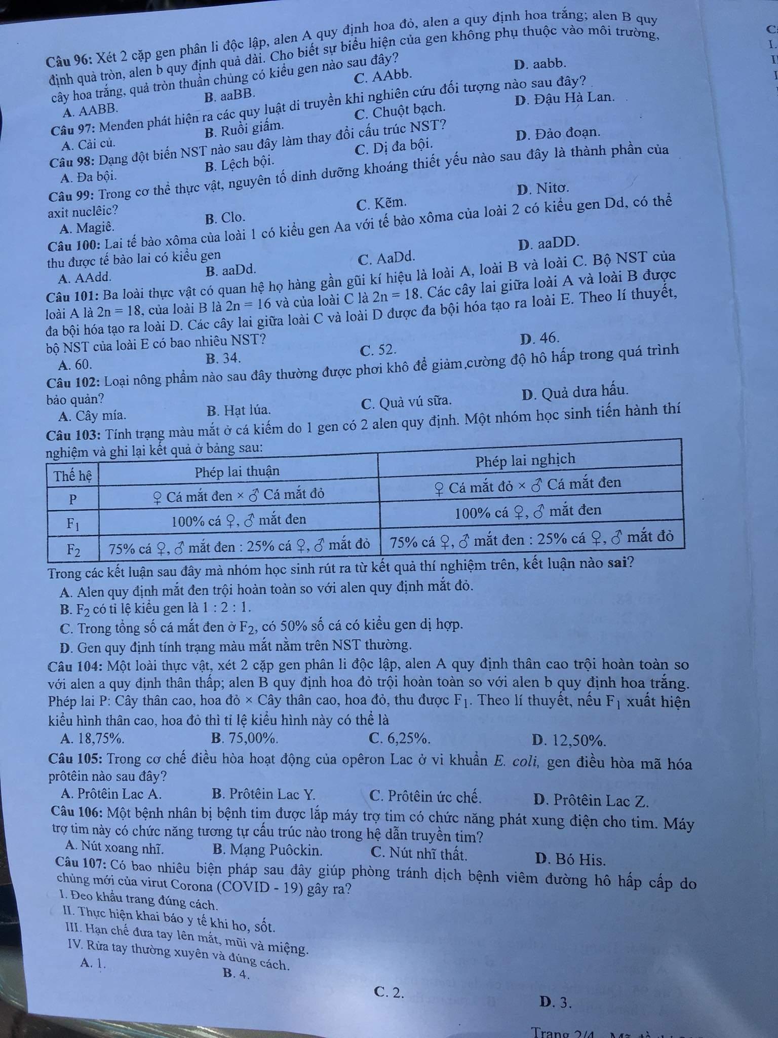 Đáp án đề thi THPT Quốc gia 2020 Sinh học ĐÃ ĐỦ 24 MÃ ĐỀ