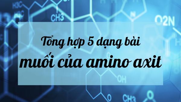 Nhớ ngay 5 dạng bài tập muối amoni của amino axit hay thi nhất dưới đây