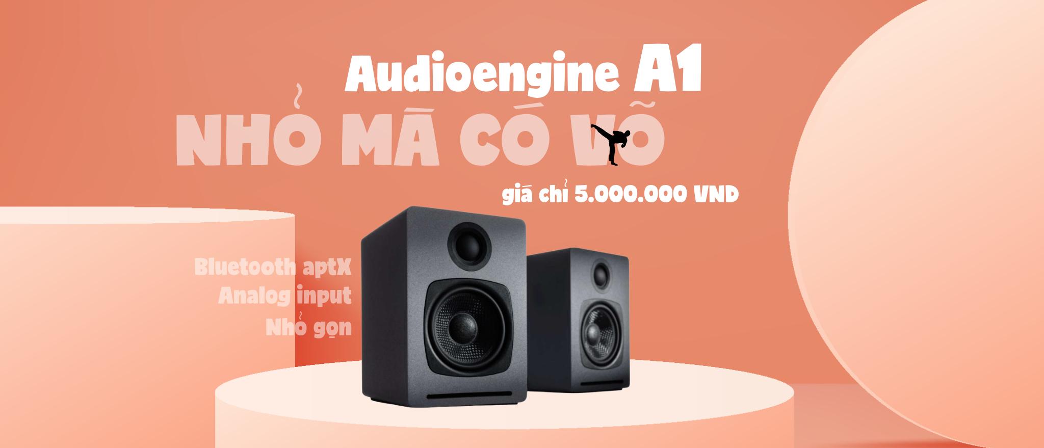 Loa máy tính Audioengine A1 chính hãng