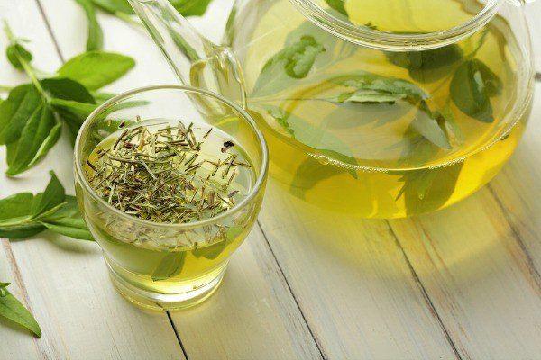 Lợi ích khi sử dụng trà cỏ ngọt là gì? Công thức pha trà cỏ ngọt tại nhà